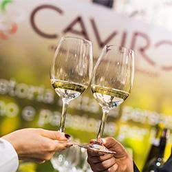 Caviro è miglior produttore italiano al Mundus Vini Summer Tasting
